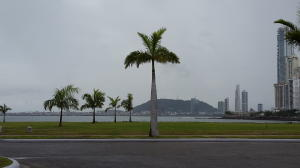 Terreno En Ventaen Panama, Punta Pacifica, Panama, PA RAH: 15-3257