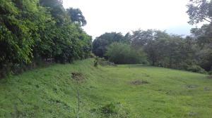 Terreno En Venta En Panama, Las Cumbres, Panama, PA RAH: 15-3465