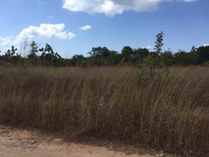 Terreno En Venta En Rio Hato, Playa Blanca, Panama, PA RAH: 16-67