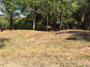 Terreno En Venta En David, Porton, Panama, PA RAH: 16-667