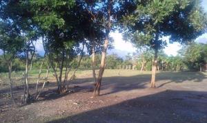 Terreno En Ventaen Cocle, Cocle, Panama, PA RAH: 16-974