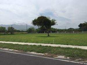 Terreno En Venta En Chame, Coronado, Panama, PA RAH: 16-1725