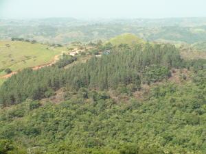 Terreno En Ventaen San Carlos, San Carlos, Panama, PA RAH: 16-1859