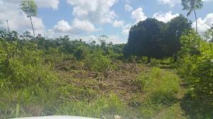Terreno En Ventaen Chiriqui, Chiriqui, Panama, PA RAH: 16-1878