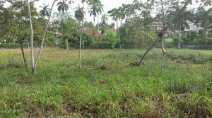 Terreno En Venta En Panama Oeste, Arraijan, Panama, PA RAH: 16-1906