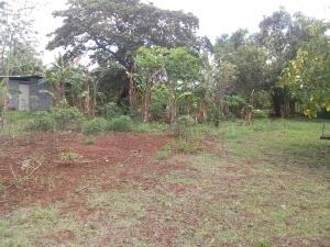 Terreno En Venta En Panama Oeste, Arraijan, Panama, PA RAH: 16-2113