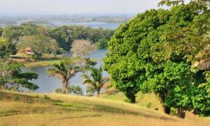 Terreno En Ventaen La Chorrera, Chorrera, Panama, PA RAH: 16-2197