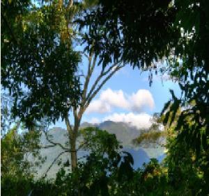Terreno En Venta En Boquete, Boquete, Panama, PA RAH: 16-2227