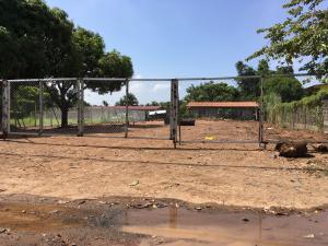 Terreno En Alquiler En Panama, Versalles, Panama, PA RAH: 16-2644