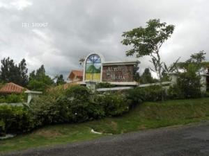 Terreno En Venta En Chame, Sora, Panama, PA RAH: 16-2894