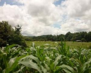 Terreno En Venta En Chame, Coronado, Panama, PA RAH: 16-2944