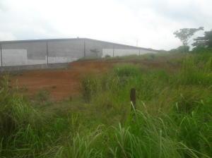Terreno En Alquileren La Chorrera, Chorrera, Panama, PA RAH: 16-3158