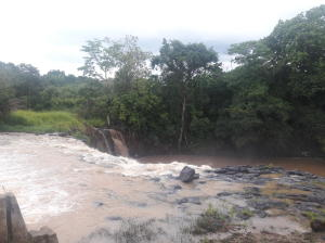Terreno En Alquileren La Chorrera, Chorrera, Panama, PA RAH: 16-3161