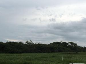 Terreno En Venta En Pedasi, Pedasi, Panama, PA RAH: 16-3257