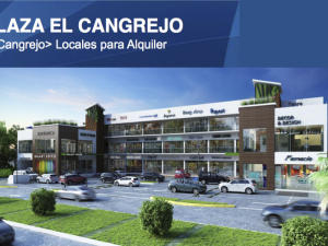 Local Comercial En Alquileren Panama, El Cangrejo, Panama, PA RAH: 14-1276