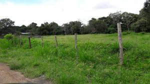 Terreno En Alquileren La Chorrera, Chorrera, Panama, PA RAH: 16-4482