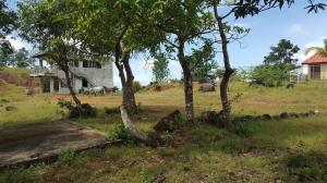 Terreno En Venta En Chame, Coronado, Panama, PA RAH: 16-3924