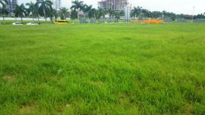 Terreno En Venta En Panama, Costa Del Este, Panama, PA RAH: 16-4819