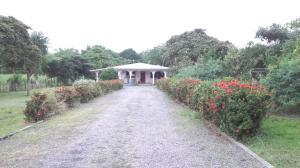 Terreno En Venta En Cocle, Cocle, Panama, PA RAH: 16-4851