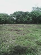 Terreno En Venta En Pedasi, Pedasi, Panama, PA RAH: 17-279