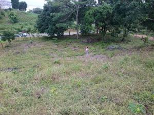 Terreno En Alquiler En Panama Oeste, Arraijan, Panama, PA RAH: 17-764