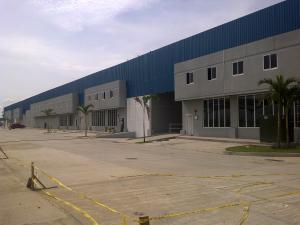 Galera En Alquiler En Panama, Tocumen, Panama, PA RAH: 17-986