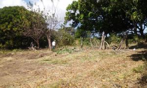 Terreno En Ventaen Penonome, El Coco, Panama, PA RAH: 17-1041