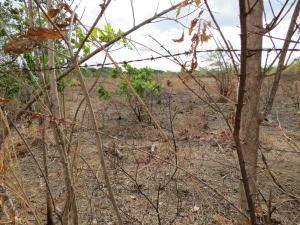 Terreno En Venta En Penonome, El Coco, Panama, PA RAH: 17-1432