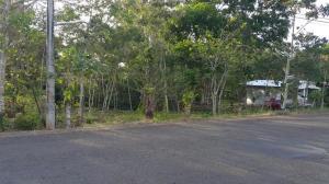 Terreno En Venta En La Chorrera, Chorrera, Panama, PA RAH: 17-1692