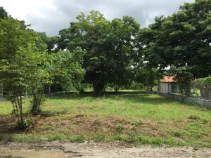 Terreno En Ventaen Panama, Reparto Nuevo Panama, Panama, PA RAH: 17-3604