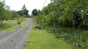 Terreno En Ventaen Panama, Villa Lido, Panama, PA RAH: 17-3989