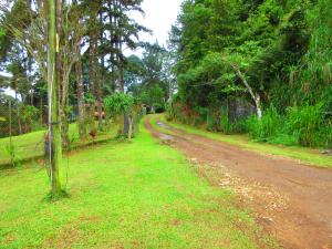 Terreno En Alquiler En Pacora, Cerro Azul, Panama, PA RAH: 17-4136