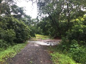 Terreno En Ventaen La Chorrera, Chorrera, Panama, PA RAH: 17-4539