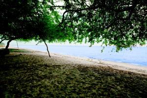 Terreno En Venta En San Carlos, San Carlos, Panama, PA RAH: 17-4767