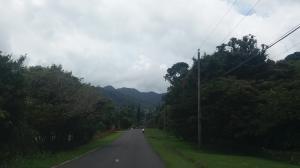 Terreno En Ventaen Remedios, Remedio, Panama, PA RAH: 17-5105