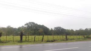 Terreno En Ventaen David, Porton, Panama, PA RAH: 17-5554