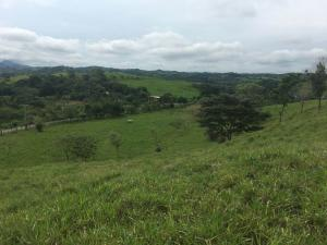 Terreno En Alquileren La Chorrera, Chorrera, Panama, PA RAH: 17-5737