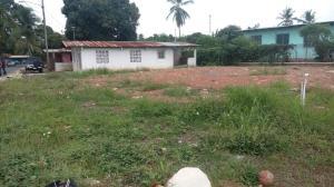 Terreno En Ventaen La Chorrera, Chorrera, Panama, PA RAH: 17-5738