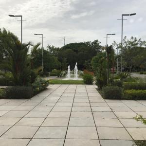 Local Comercial En Alquileren David, Porton, Panama, PA RAH: 17-6180