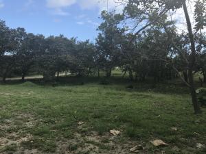 Terreno En Ventaen Chame, Coronado, Panama, PA RAH: 17-6553