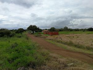 Terreno En Ventaen Pedasi, Pedasi, Panama, PA RAH: 17-6809