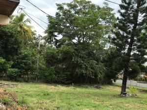 Terreno En Alquileren Chame, Coronado, Panama, PA RAH: 17-6864