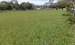 Terreno En Ventaen Chiriqui, Chiriqui, Panama, PA RAH: 18-16