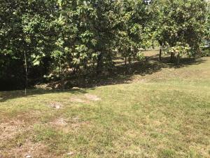 Terreno En Ventaen Chame, Coronado, Panama, PA RAH: 18-220