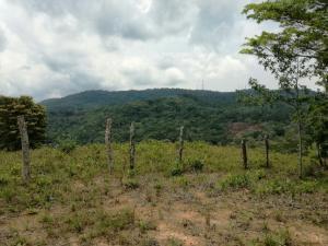 Terreno En Ventaen Panama, Tocumen, Panama, PA RAH: 18-836
