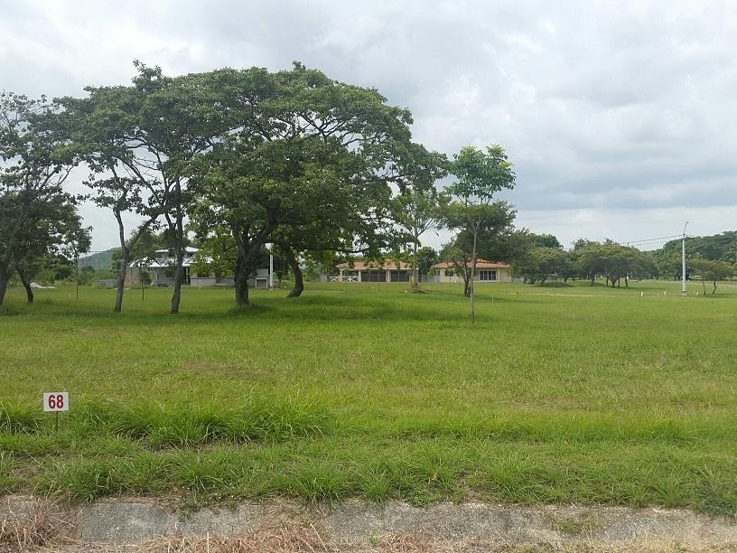 Terreno En Venta En Chame En Punta Chame - Código: 19-10054