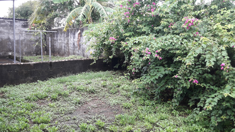 Casa En Venta En Panama - Tocumen Código FLEX: 19-11296 No.11