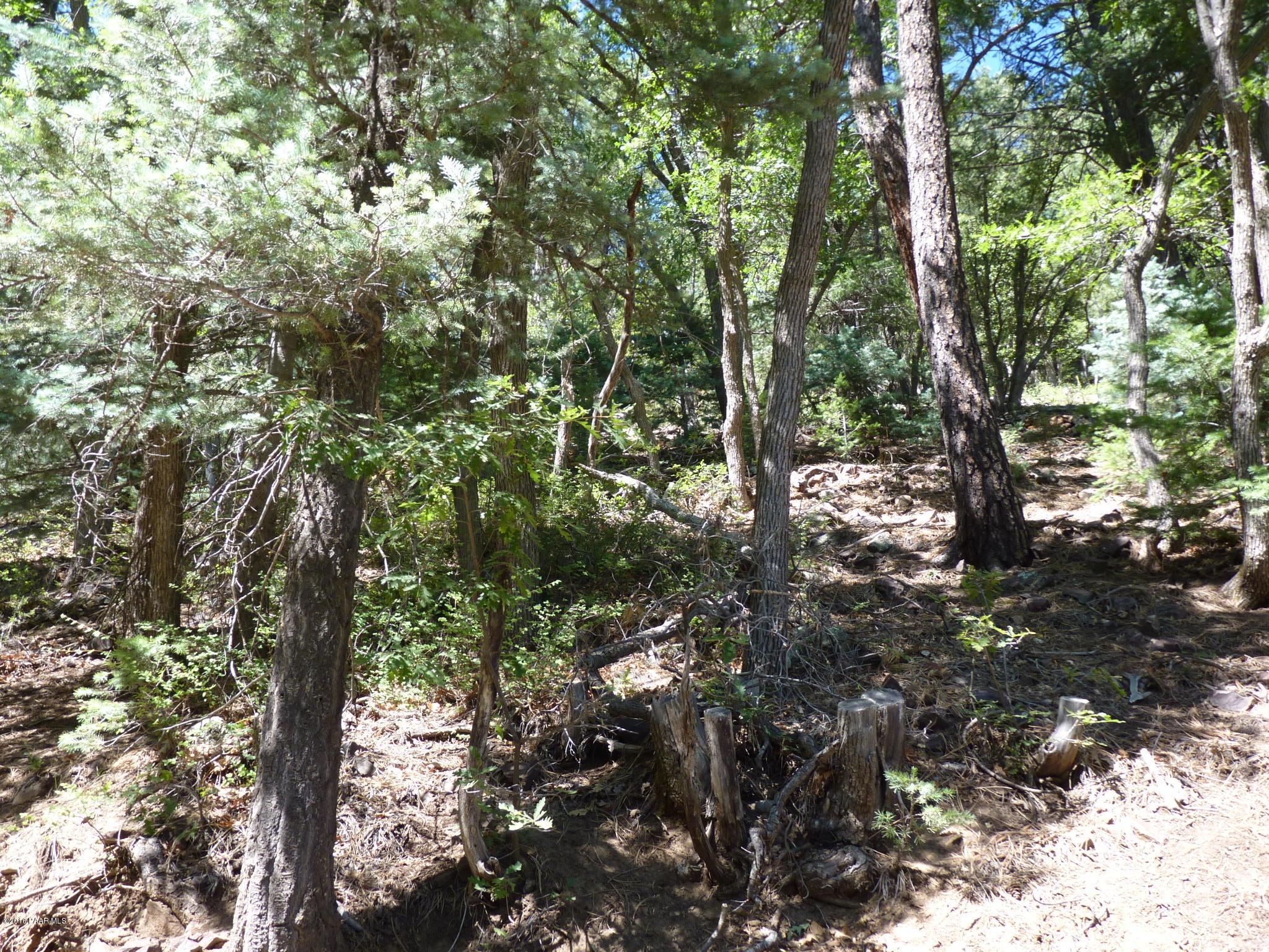 0 S Lake Drive Prescott, AZ 86303 - MLS #: 1000069