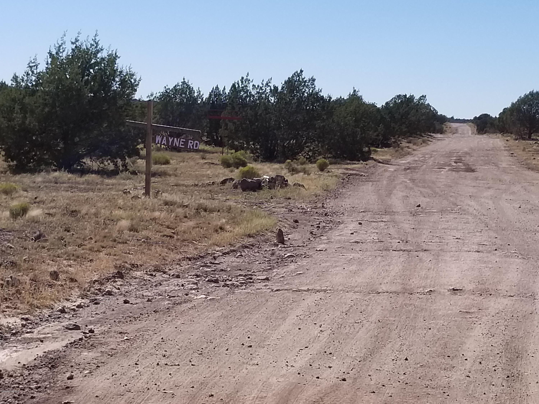 42650 N Wayne Road Ash Fork, AZ 86320 - MLS #: 1015464
