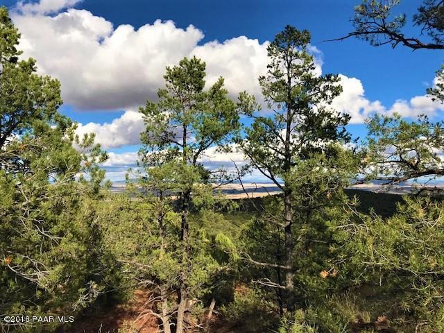 489 Off Of Ringtail Catway Seligman, AZ 86337 - MLS #: 1014154